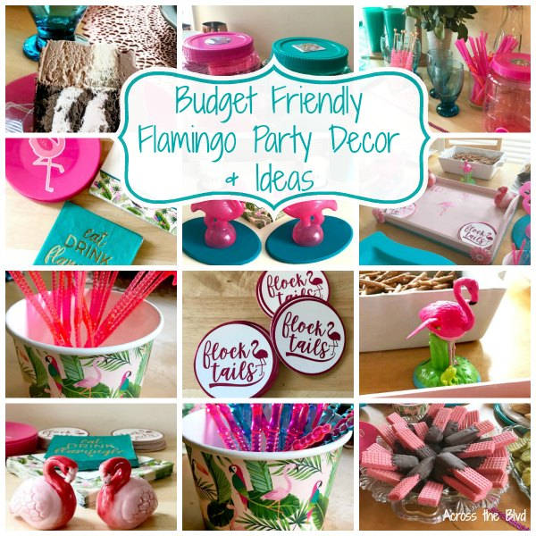 Budget Friendly Flamingo Party Ideas Across the Blvd