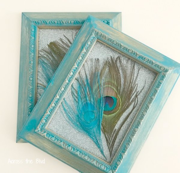 Peacock Feathers in Turquoise Frames