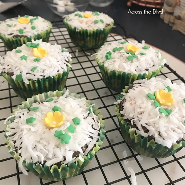 Brownie Cupcakes with Coconut Sprinkled on Top with Candy Flower Sprinkles