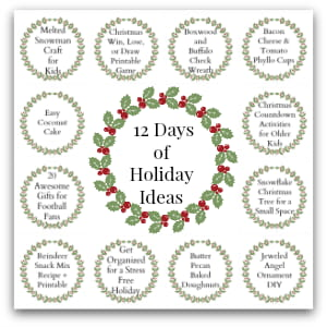 graphic for 12 days of holiday ideas