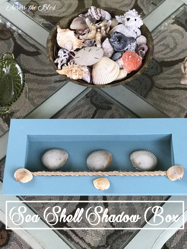 Sea Shell Shadow Box  Upcycle Challenge